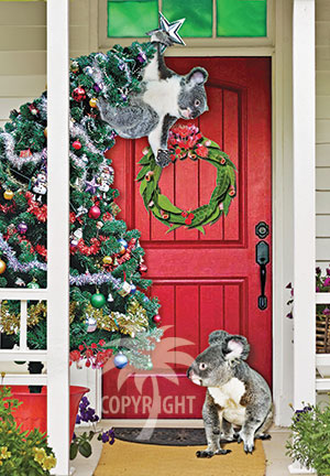 christmas with koalas