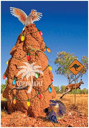 kangaroo anthill christmas